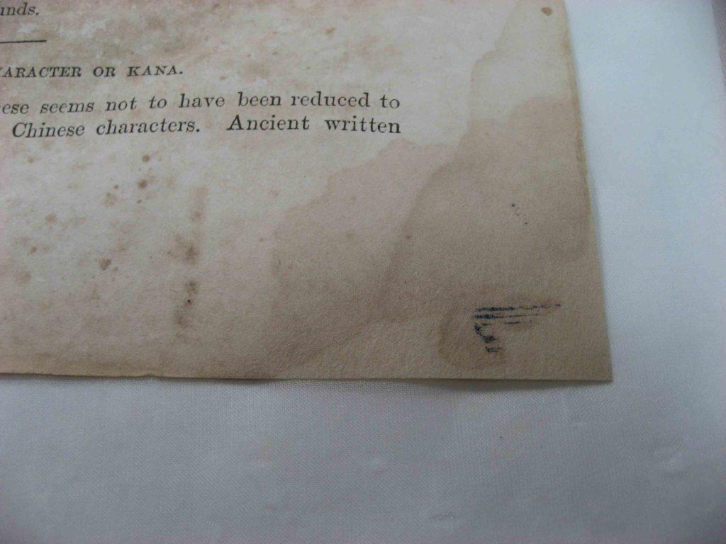 本文紙の欠損修復